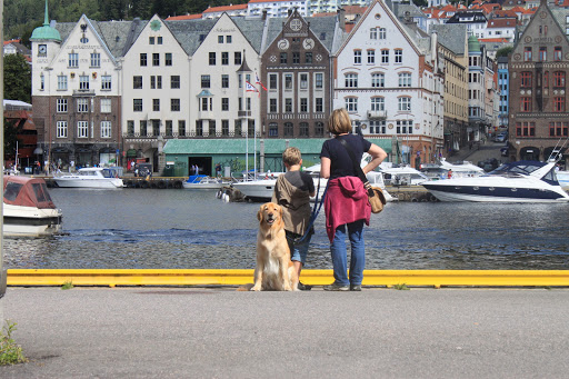 Bergen (N), August 2013 by SpaceUtopian ©